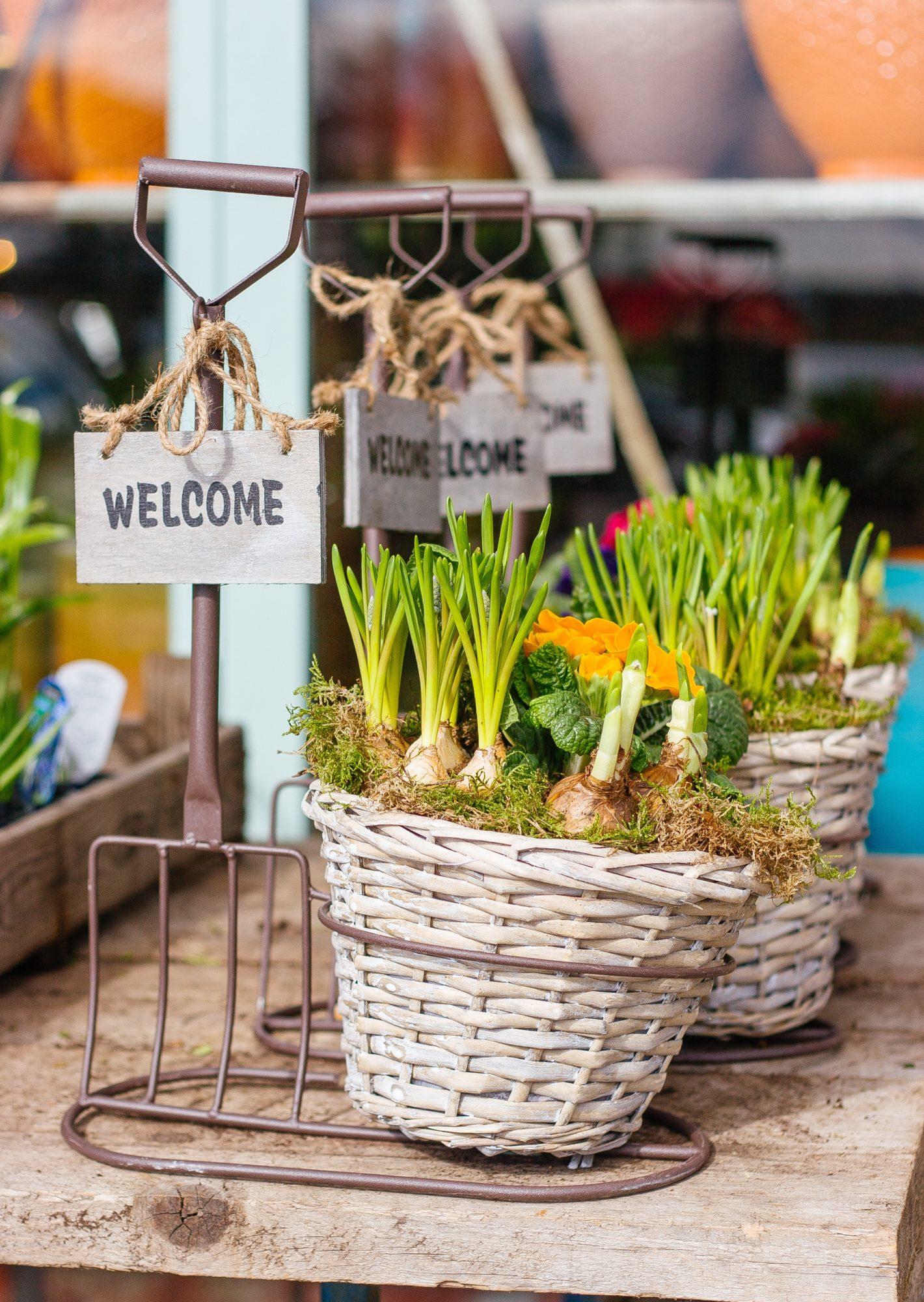 Garden Checklist: Top Tips on How to Get Your Garden Ready for Spring